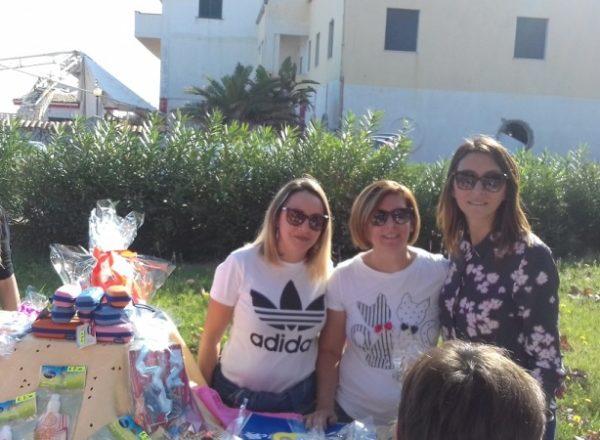 RACCOLTA FONDI IC CARITI PRO ALESSIO 2019 (15)