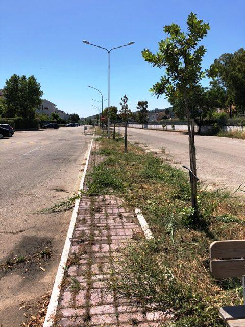 legambiente nica 20-05-2018 mandatoriccio (4)