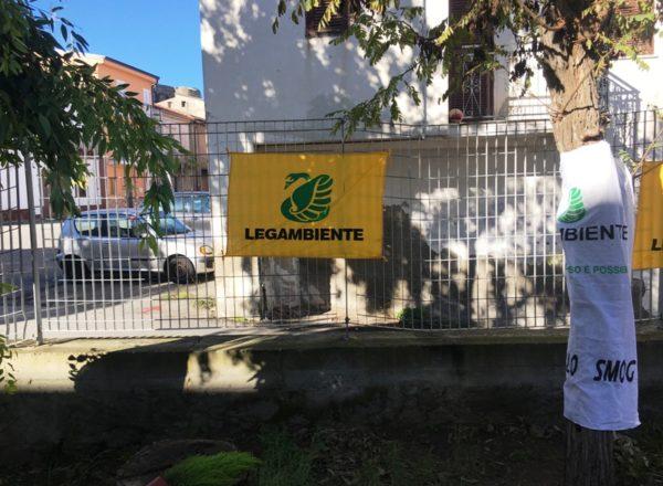 FESTA DELL'ALBERO 20183